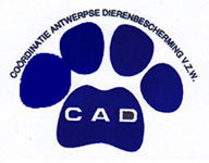 cad dierenasiel.be's picture